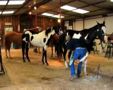 Oklahoma Horse Shoeing School – Purcell – Oklahoma